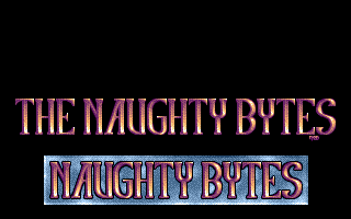 The Naughty Bytes 1